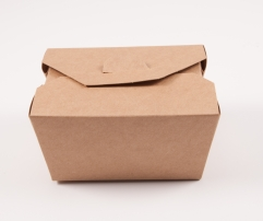 Biodegradable box